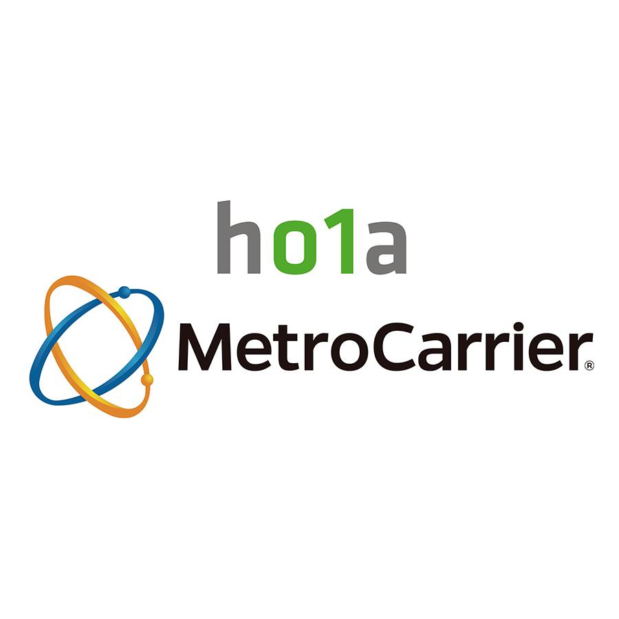 www.metrocarrier.com.mx